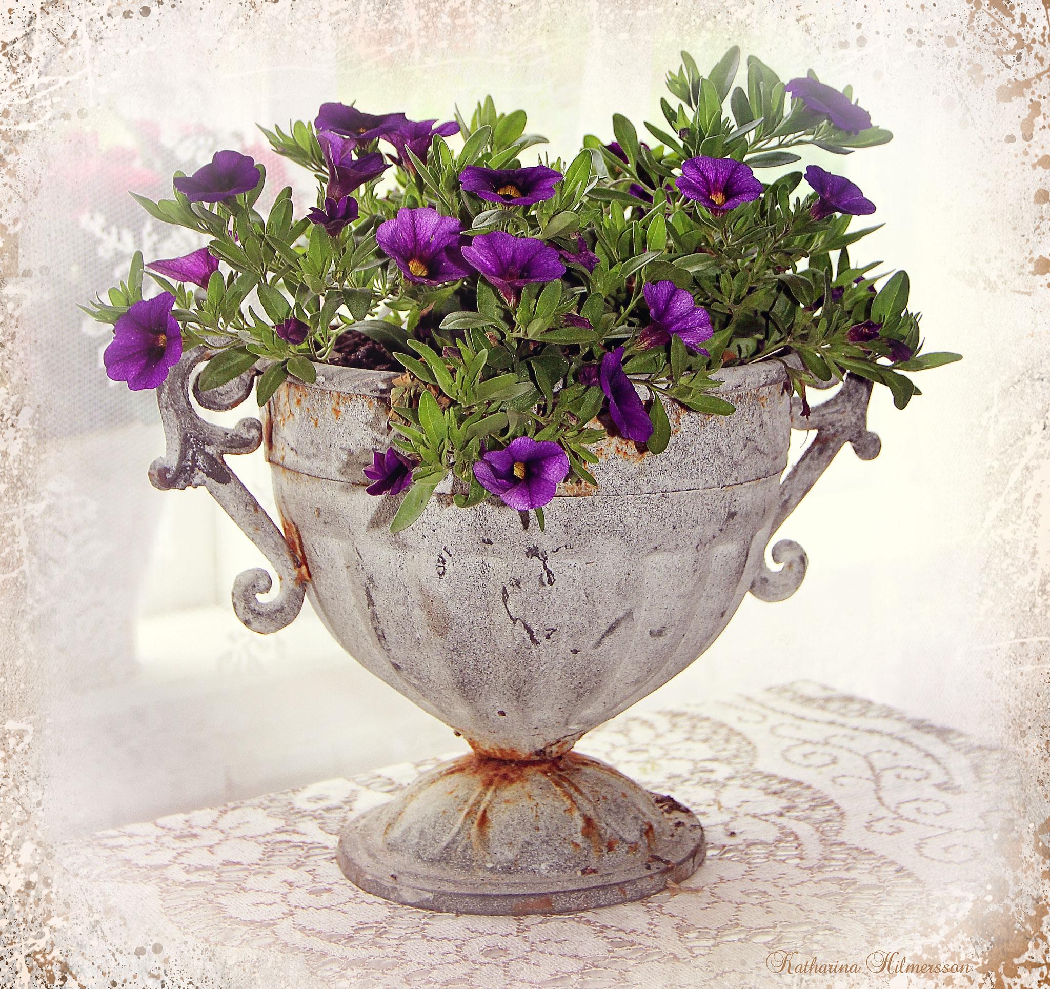 flowerskhlila1
