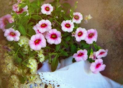rosablommorkwebb