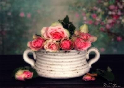 rosesbeautykh1